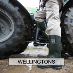 Wellingtons (40)